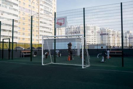 Ворота с баскетбольным щитом (сетка в комплекте) Romana 203.10.00